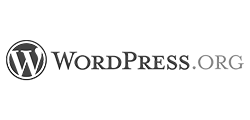 best accessibility WordPress themes